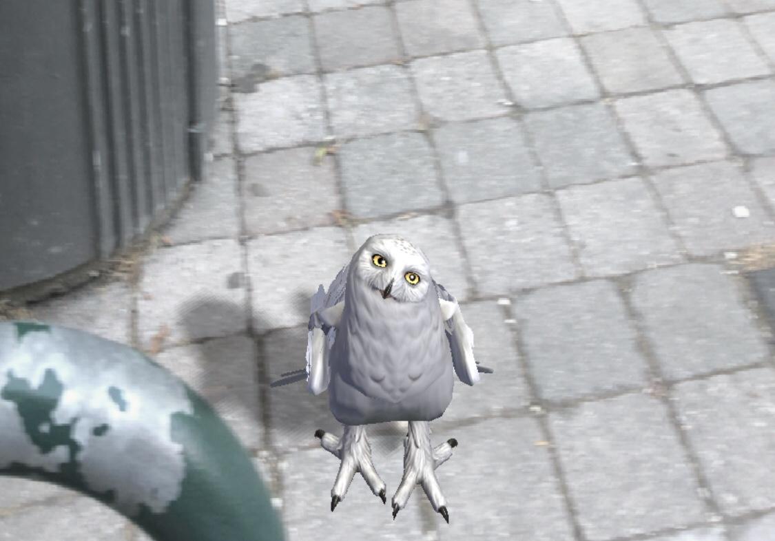 harry potterin pöllön nimi